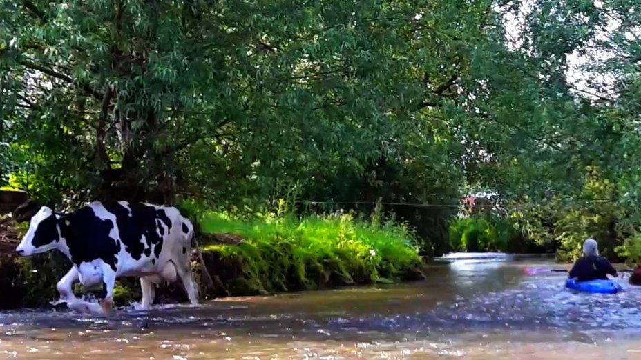 die Schwülme, kleiner Fluss am Rande des Sollings/Weserbergland